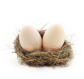 Two eggs inside the nest Royalty Free Stock Photo