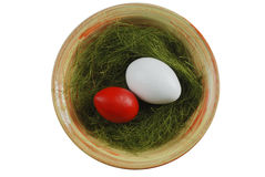 Two eggs in a plate with green grass Royalty Free Stock Images
