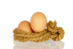 Two eggs in rope nest Stock Photo