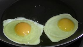 Two eggs startign to fry stock video