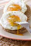 Two eggs sunny side up Stock Image