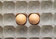 Two eggs in a tray. Royalty Free Stock Images