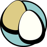 two eggs vector illustration Royalty Free Stock Photo