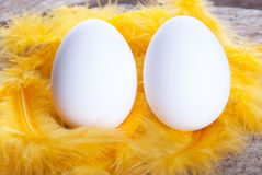Two Eggs Royalty Free Stock Photo