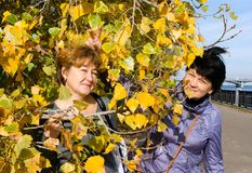 Two elderly cheerful girlfriends joke on autumn walk Stock Photography
