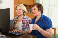 Two elderly female browsing web Stock Images