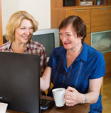 Two elderly female browsing web Royalty Free Stock Photos