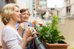 Two elderly housewives drinking tea at terrace Stock Photo