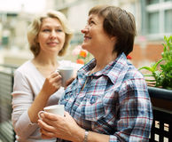 Two elderly housewives enjoying tea at terrace. With decorative plants Royalty Free Stock Photography