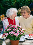 Two elderly ladies enjoying coffee together. Two elderly ladies enjoying coffee together seated at an outdoor restaurant in summer laughing and smiling in a Royalty Free Stock Photo