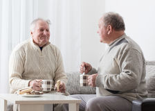 Two elderly men with cup of tea Royalty Free Stock Images
