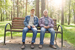 Two elderly men are sitting on a park bench, Elderly man dressed in jackets are resting in pinewood Royalty Free Stock Image