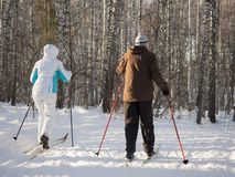 Two elderly people go skiing with ski poles in the winter park. Good bright day. Healthy lifestyle. View from the back royalty free stock photos
