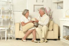 Two elderly people Stock Image