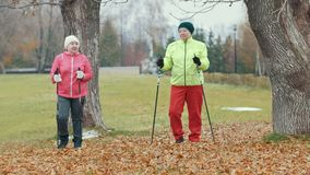 Two elderly woman in autumn park doing warm up before nordic walking. Telephoto shot stock video footage