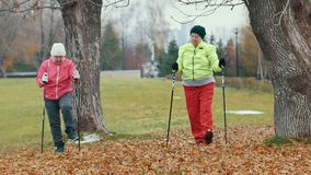 Two elderly woman in autumn park doing warm up before nordic walking. Telephoto shot stock video
