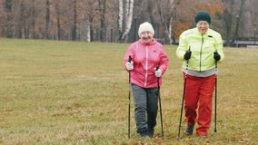 Two elderly woman in autumn park have nordic walking among autumn cold park. Telephoto shot stock video