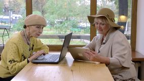 Two elderly women and laptop. stock footage