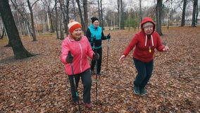 Two elderly women running on sticks of nordic walking