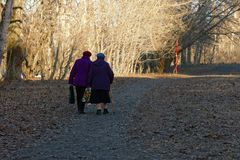 Two elderly women walk along the path in the park stock images