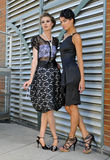 Two elegant fashion models Royalty Free Stock Image