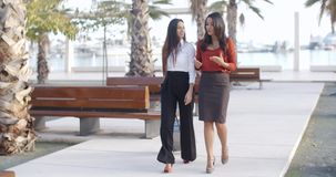 Two elegant ladies walking and chatting stock footage
