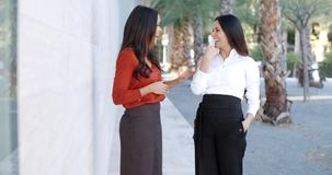 Two elegant women standing watching something. Two elegant women standing together watching something off to the right of the frame in an urban street stock video footage