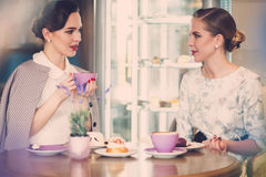 Two elegant young ladies in a cafe.  stock photos