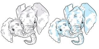 Two elephant sketches on white background. Set of colorful elephants stock illustration