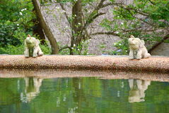 Two elephant statue. They are two elephant statue in thai style garden Stock Photography