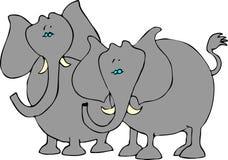 Two elephants vector illustration
