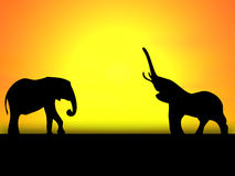 Two elephants. On a background bright yellow sunset Stock Image