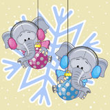 Two Elephants in a fur headphones Stock Images