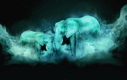 Free Two Elephants In Blue Fog Stock Images - 96246904