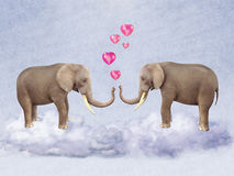 Two elephants in love. Stock Images