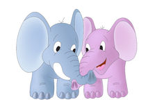 Two elephants with twisted trunks Royalty Free Stock Photography