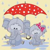 Two Elephants with umbrella Stock Photo