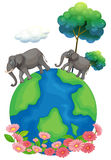 Two elephants walking at the earth's surface Royalty Free Stock Photos
