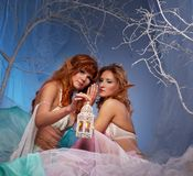 Two elf women with a lantern in a forest. Elves in magical winter forest with lantern Royalty Free Stock Image