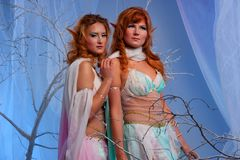Two elf women in magical forest. Elves in magical winter forest Stock Images