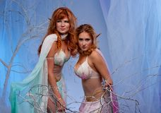 Two elf women in magical forest. Elves in magical winter forest Royalty Free Stock Image
