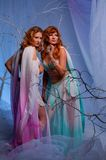 Two elf women in magical forest. Elves in magical winter forest Royalty Free Stock Photos