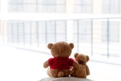 Two embracing bear cubs on a white background. Picture of two teddies hugging bears on a light background Stock Photos