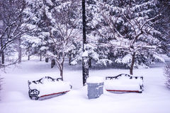 Two empty benches covered with snow in the park Stock Images