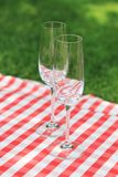 Two empty glasses  in the garden Royalty Free Stock Image