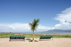 Two empty park benches. Two green park benches on tiled walkway overlooking Lake Chapala and mountain with clouds, blue sky and palm tree Stock Images