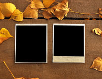 Two empty photo frame Royalty Free Stock Photography