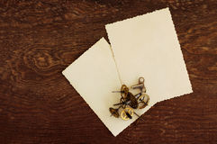 Two empty photographs on an old wooden background Stock Image