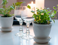Two empty vintage wine glasses Royalty Free Stock Photo