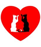 Two enamoured cats. Against red heart Stock Image